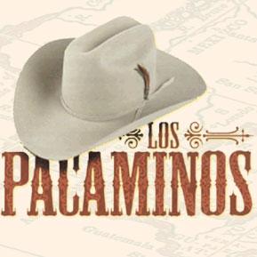 Los Pacaminos (feat Paul Young)