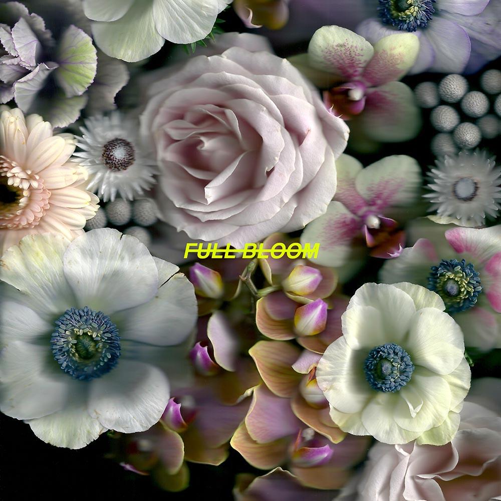 Full Bloom [Digital Download] - Alpines