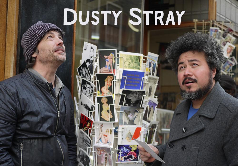 Dusty Stray