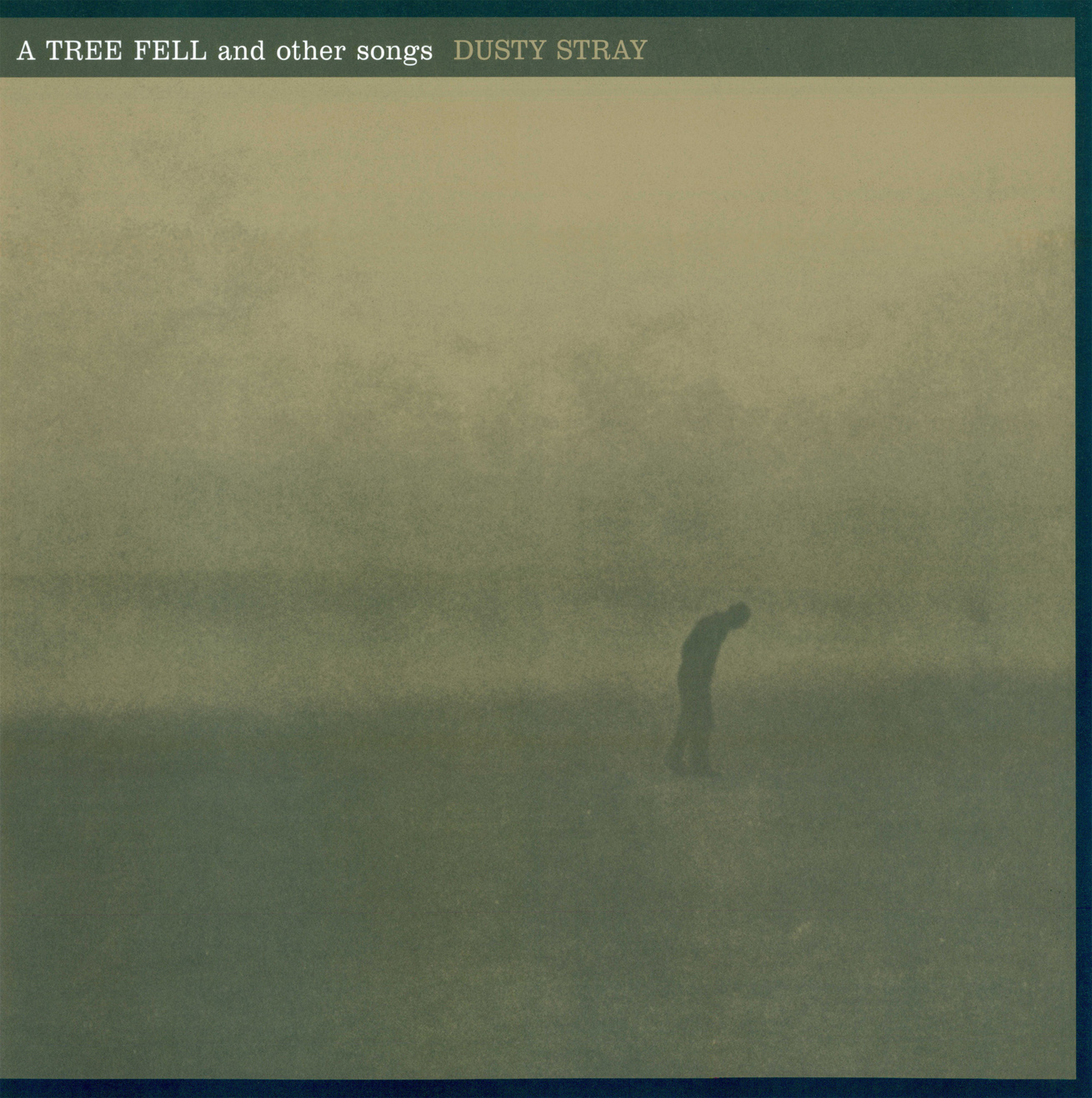 A Tree Fell And Other Songs VINYL LP - Dusty Stray