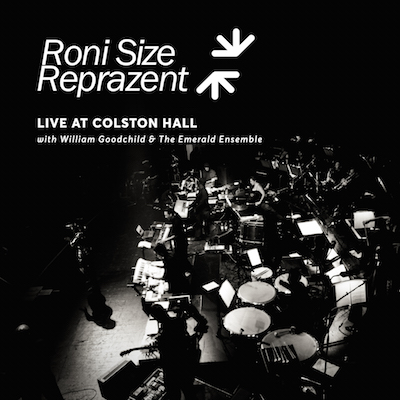 Share The Fall (Extended Preview - FREE DOWNLOAD) - Roni Size